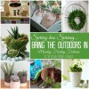 7 Indoor Spring Projects and Monday Funday {61}