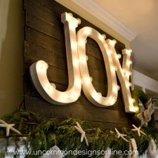Joy:  Letters in Light