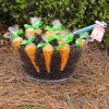 Make your Own Carrot Patch for Easter Treats