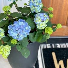 A Grown Up Summer Porch