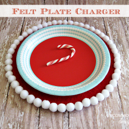 felt-pom-pom-plate-charger