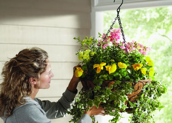 MB-hanging-basket-woman-540