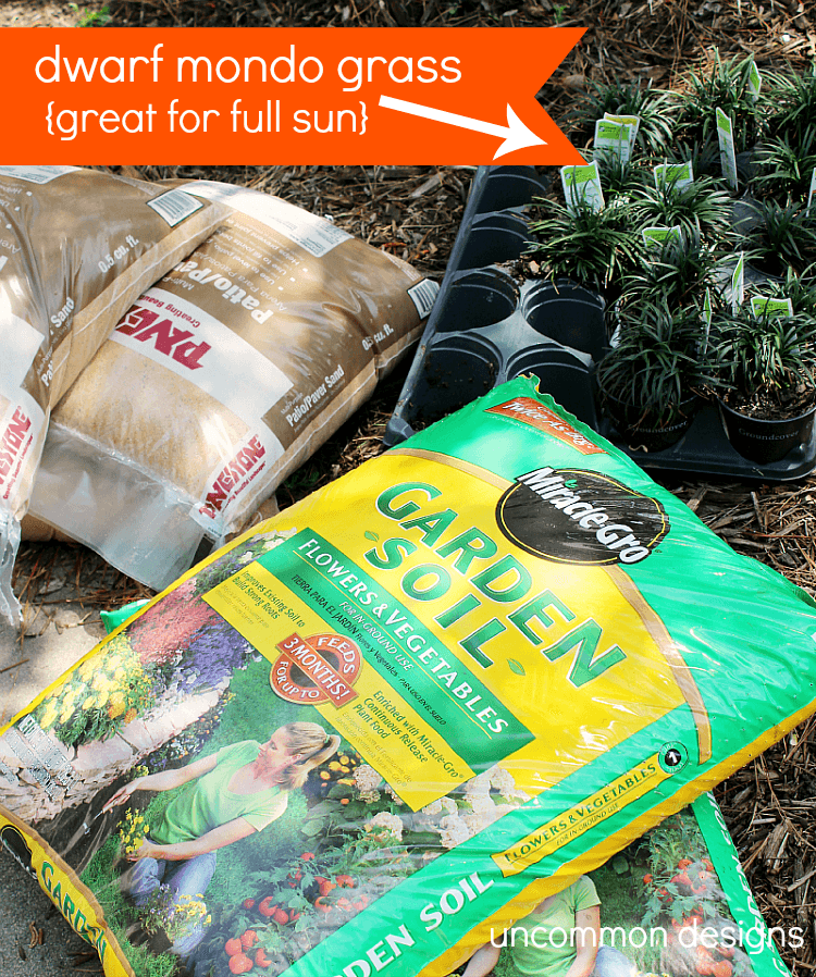 Home-Depot-Ground-cover-mondo-grass-#digin
