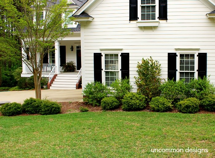 Home-depot-front-yard-before