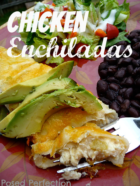 Monday-Funday-Chicken-Enchiladas