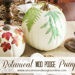 DIY_botanical_pumpkins_graphic