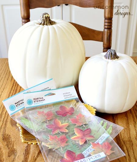 botanical_pumpkins_supplies