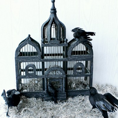 Haunted Birdcage for Halloween