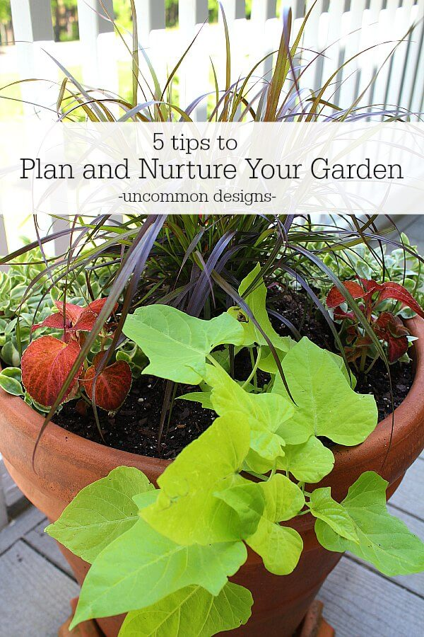 5 tips to plan and nurture your garden uncommon designs for Plan your garden online
