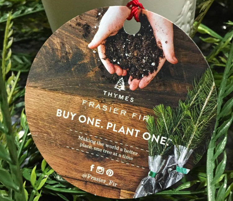 This year decorate and give with a purpose with Thymes candles and their Buy One. Plant One. Campaign #ad #TheBestGiftEver