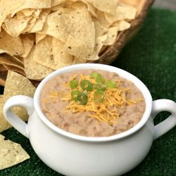 Quick and Easy Spicy Bean Dip