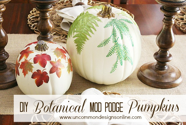 DIY Botanical Mod Podge Pumpkins by Uncommon Designs