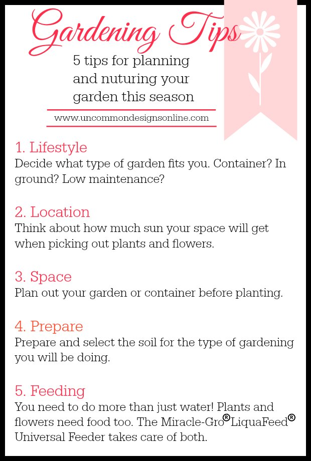 5 tips to plan and nurture your garden this season from Uncommon Designs.