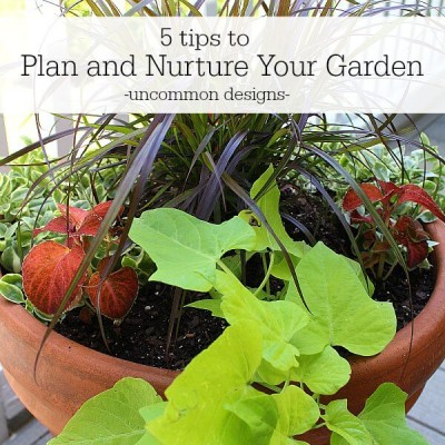 5 Tips To Plan and Nurture Your Garden